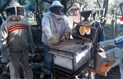 Impulsan desarrollo del sector apícola