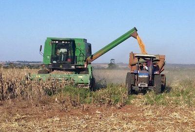 Aporte de agroexportadoras fue 7 veces menor que los créditos fiscales que recibieron en 2018