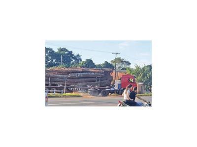 Imparable deforestación preocupa a pobladores