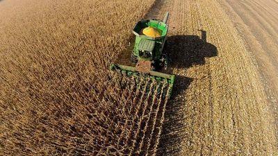 Argentina pretende  exportar maíz a México