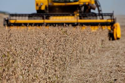 Brasil: Cosecha de granos podría superar las 238 millones de toneladas