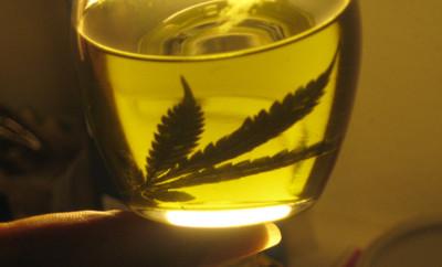 """""""El aceite de cannabis le ayudó y sigue ayudando a mi mamá"""", confiesa concejal"""