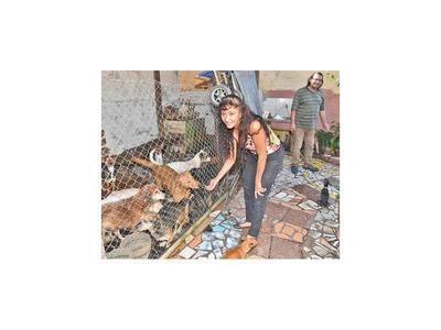 Mujer alberga en su casa a  casi 30 perros abandonados