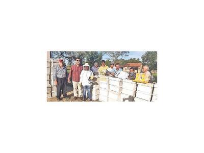 Apuestan a la  miel de abeja en Misiones