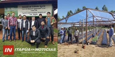 CNEL. BOGADO: JÓVENES PROFESIONALES PRESENTAN PLAN DE PRODUCCIÓN DE HORTALIZAS