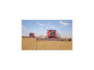 Agroindustrias accionarán si se elimina devolución del IVA