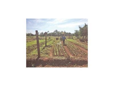 Vecinos esperan solución tras  años de lucha para conseguir   tierras