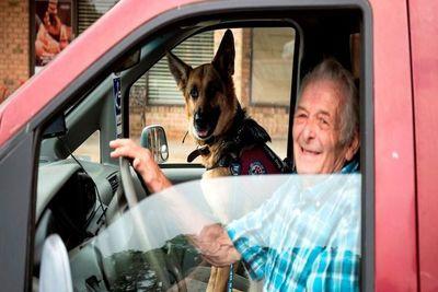 Cuando los perros son los terapeutas de los veteranos