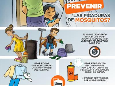 Dengue: descenso paulatino de casos a nivel país