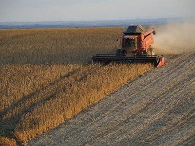 Senado aprueba la no devolución de IVA a agroexportadores