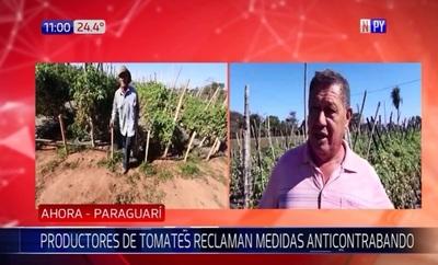 Productores de tomate exigen medidas anticontrabando
