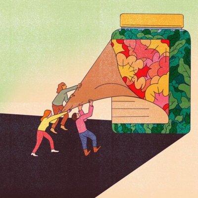 Debemos librar una guerra contra la comida chatarra