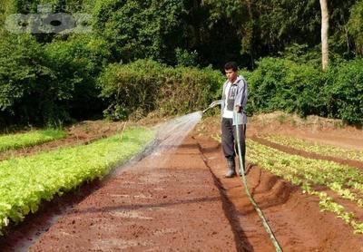 Desarrollo sustentable de la producción agropecuaria