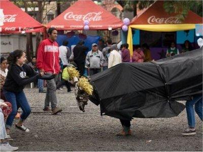 Eco San Juan a lo Chacarita, este sábado en plaza Juan E. O'Leary