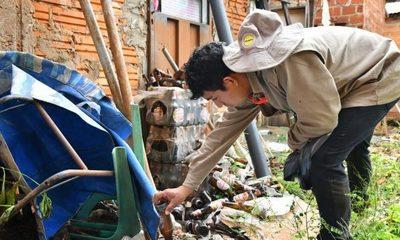 """""""Pará-na los criaderos"""": trabajos de rastrillaje y fumigación previstos para este viernes"""