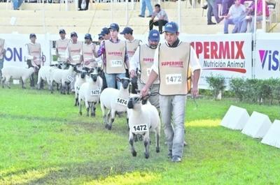 En Mariano Roque Alonso la inscripción de ovinos creció un 20% frente al año pasado