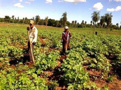 CAH impulsa reestructuración de deudas al sector campesino