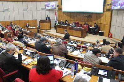 Senado aprobó proyecto Ñane Energía y pasó al Ejecutivo