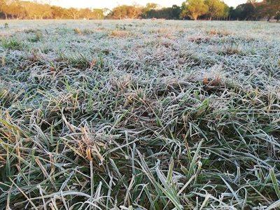 Frío polar se hizo sentir con intensidad este fin de semana en Misiones
