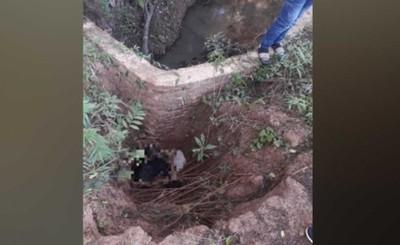 Anciano muere desnucado al caer de puente sin señalización