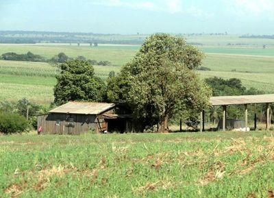 Brigada Indígena que atacó a estancia en Amambay podría ser una célula del EPP » Ñanduti