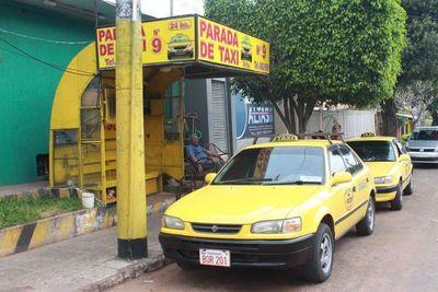 """Taxipy: """"Los taxistas por más malos que sean, están plenamente habilitados"""""""