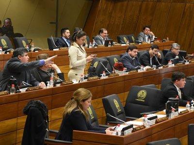 Diputados se aferran al autoblindaje y rechazan el  veto de Mario Abdo