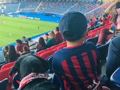 Lea, la perrita que acompañó a un niño autista al estadio para alentar a su club