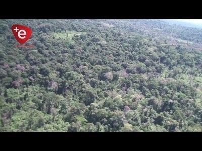 DESTACAN COOPERACIÓN DE ONGS Y CUERPO DE PAZ EN PROTECCIÓN DE LOS RECURSOS NATURALES