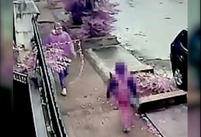 Detienen al presunto autor de agresión a una niña en Sajonia