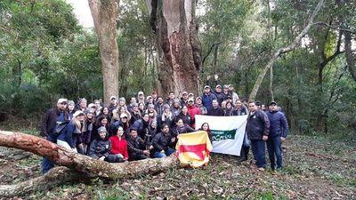 Buscan al árbol más coloso en rancho de Horqueta