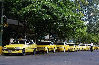 Junta Municipal podría suprimir las paradas de taxis