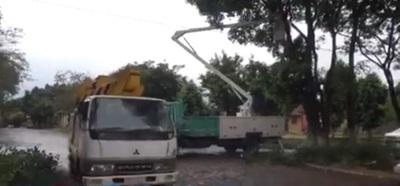 Realizan poda de árboles en Franco