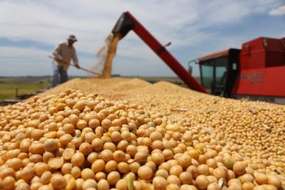 Gobierno trabaja en producción sustentable de soja