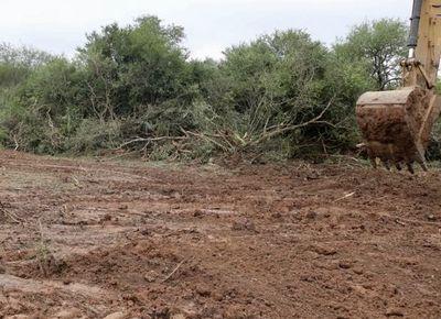 MOPC proyecta abrir nuevo camino en el Chaco