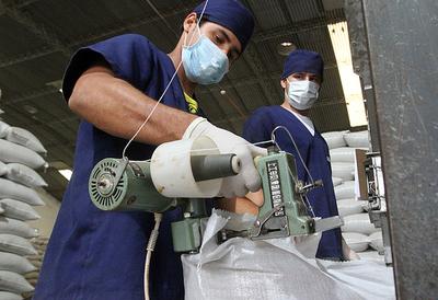 La formalización de mano de obra ocupada se incrementó en el segundo trimestre de 2019