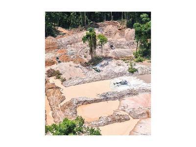Bolsonaro insiste en el  desarrollo de la Amazonia