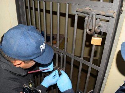 Sumarian a 11 policías tras fuga de supuesto abusador de una niña