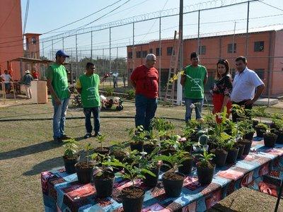 Internos donan plantines para contribuir con el medio ambiente