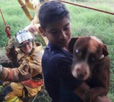 Captan rescate de perra que cayó a un pozo