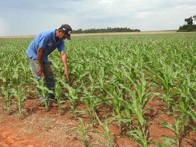 MAG estableció una nueva forma de trabajar con el sector campesino, afirma ministro