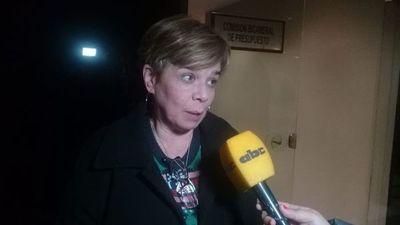 """""""Debería primar la pluralidad"""" en la comisión que investigará acta de Itaipú"""