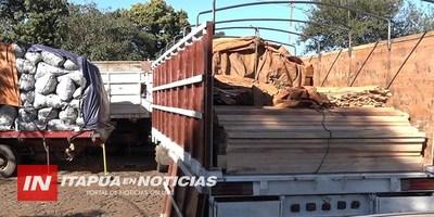 CONTINUA EXPLOTACIÓN FORESTAL CLANDESTINA SIGUE SIENDO DESCUBIERTA