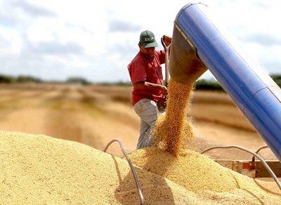 Deudas de agricultores se incrementaron 12,6%