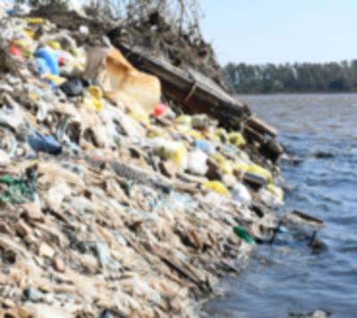 Concluyen que basura en arroyo Mburicaó mata a peces