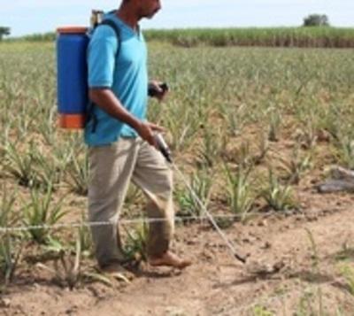 Estado paraguayo condenado por caso con trasfondo ambiental