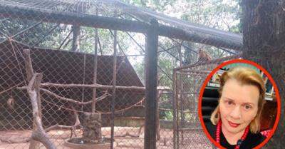 Guarara se armó por monos sueltos en el zoo