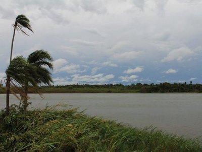 Cultivos y embarcaderos invaden bosques  de Itaipú en Puerto Indio