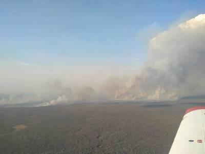 "Logran controlar incendio en el Pantanal paraguayo; reserva ""Los Tres Gigantes"" fue arrasada"