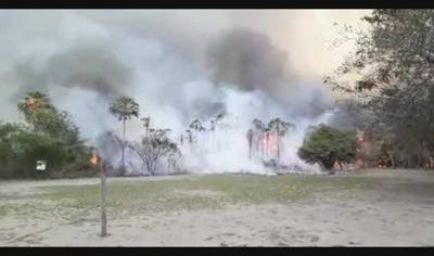 Incendio en Pantanal se  llevó 21 mil hectáreas